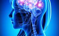 Beyninizin Çalışmasını Güçlendirin