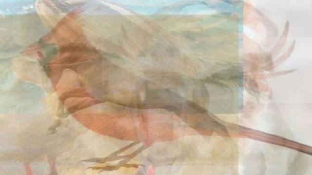 Resimde Gördüğünüz ilk Hayvan Hangisi? Kişilik Testi