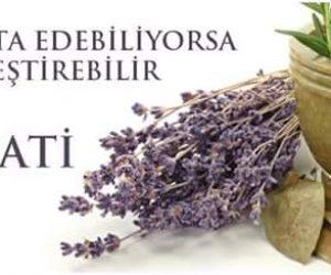 Benzerin Benzerle Tedavisi – Homeopati