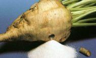 Şeker Pacarı Tohumundaki Tehlike