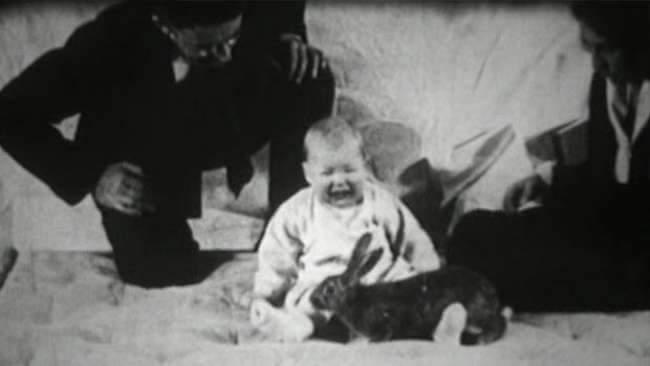 Küçük Albert – Korku Deneyi