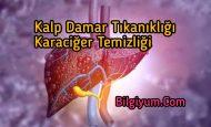 Kalp Damar tıkanıklığı ve Karaciğer Temizliği