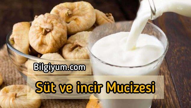 Süt ve incir Mucizesi (Öksürük, boğaz ağrısı, kabızlık)